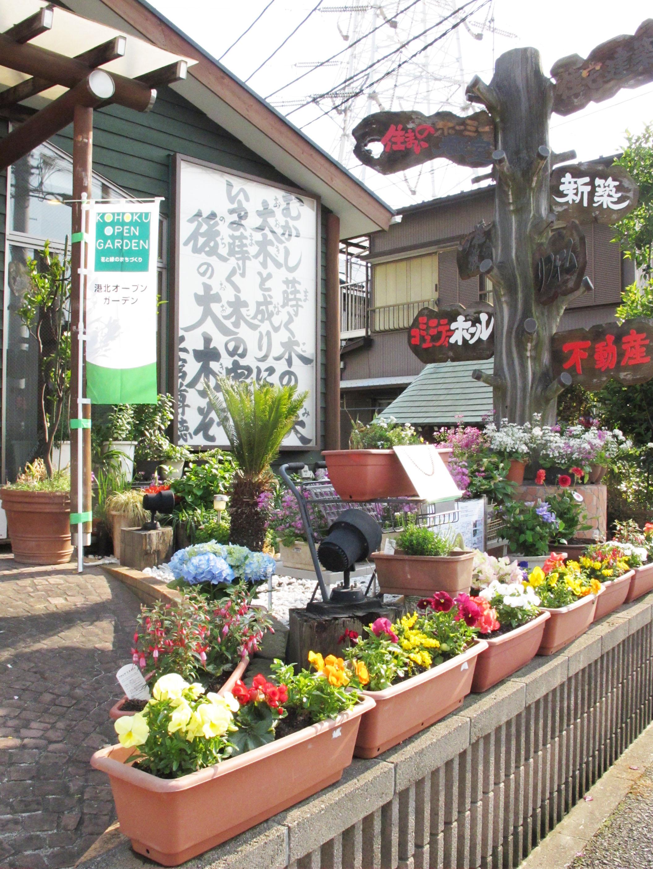 kohoku open garden